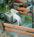 Preiser Brunnen, Pferd und Vogelhaus
